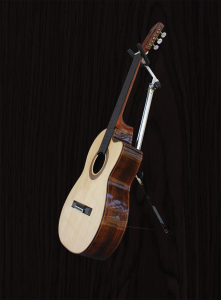 guitar-1-brown-bkgd-img_2513