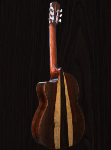 guitar-1-wood-bkgd_img_2517